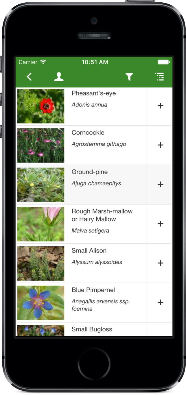 Rare Arable Flowers list screenshot