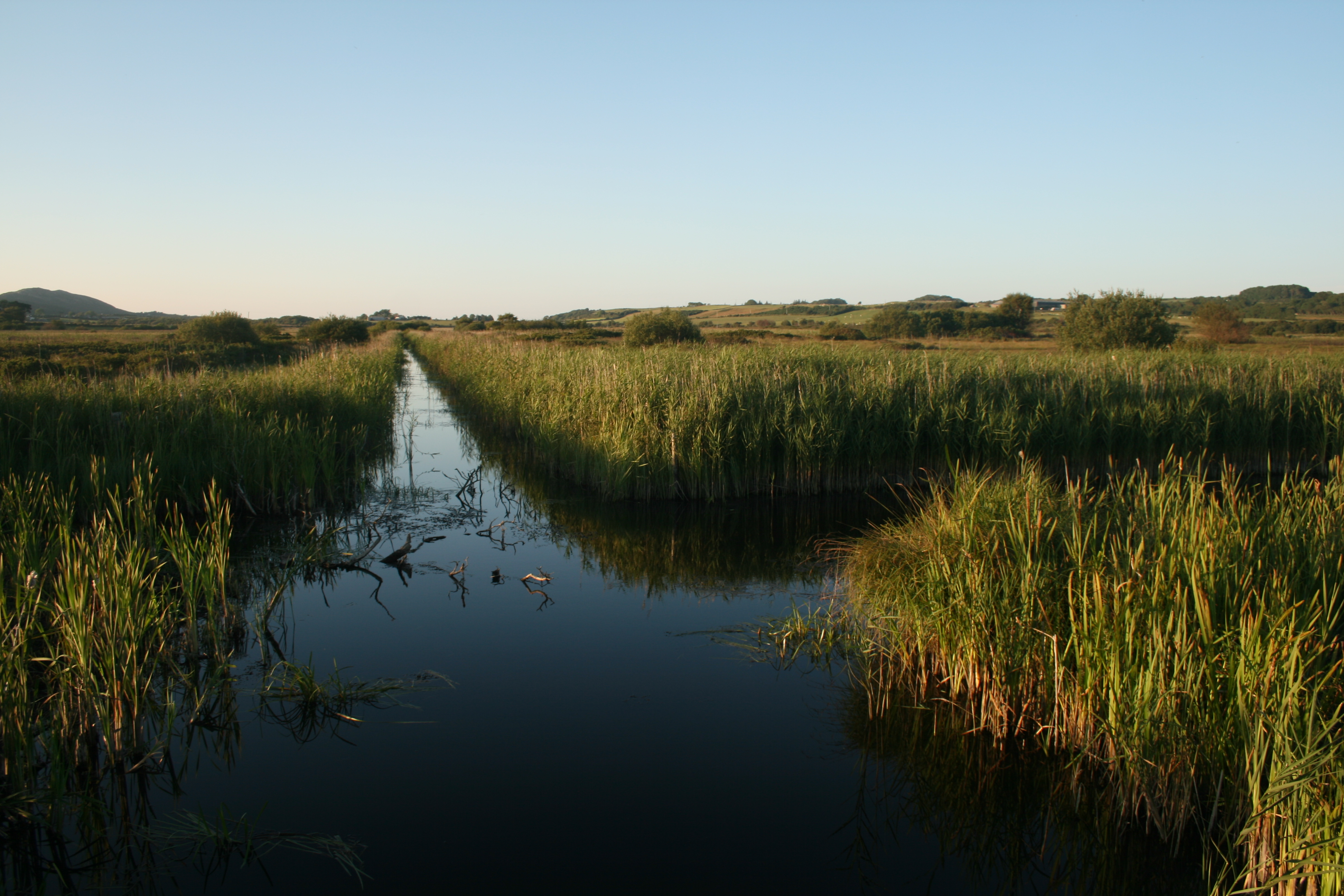 A natural fen at Cors Erddreiniog Nature Reserve, Anglesey    Picture: Chris Evans