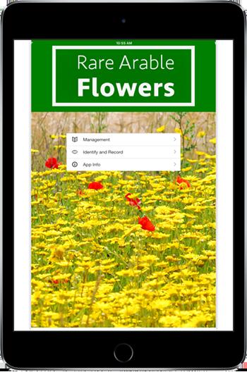 Splash screen of Rare Arable Flowers app