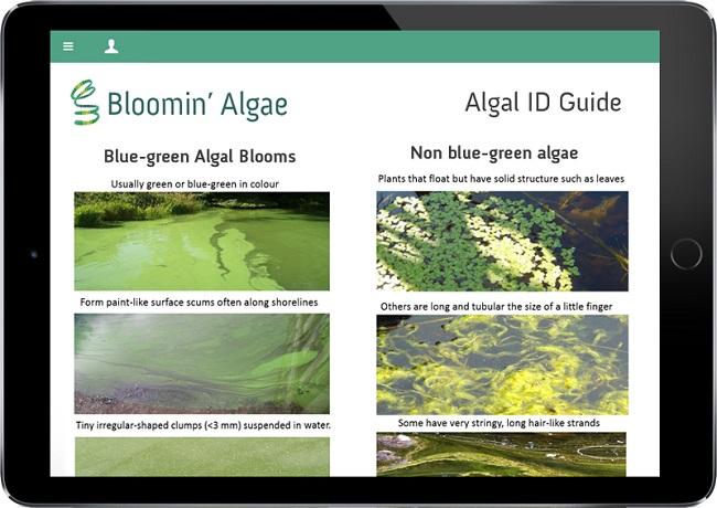 Bloomin' Algae app on iPad