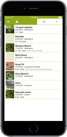 iRecord app screenshot showing list of species