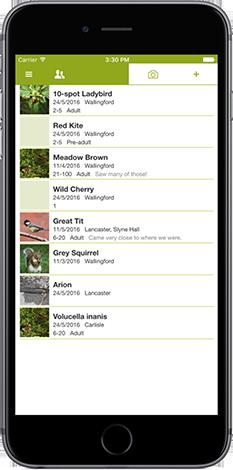 iRecord app screenshot showing list of species