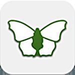 iRecord Butterflies app logo