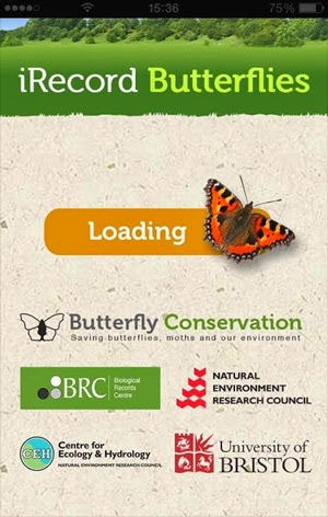 The iRecord Butterflies app is available for iOS and Android