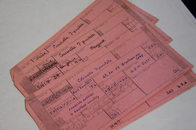 Ladybird records span more than two centuries: the record cards above are from the 1970s and 1980s.