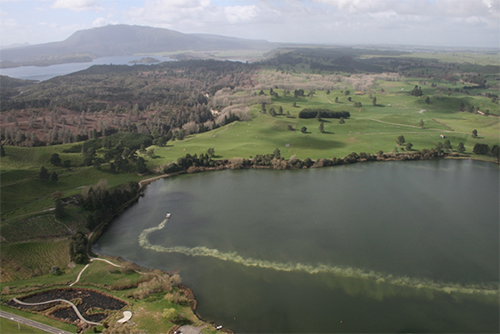 Aerial view of geo-engineering applications of a modified zeolite product called Aqual-P at Lake Okaro, New Zealand.