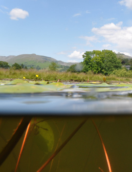 Lake secrets revealed above and below the surface. Photo by Dr Ian Winfield (CEH).