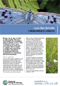 Cover of Large blue butterfly collaboration leaflet