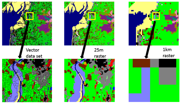 6 images showing comparison of spatial detail in LCM formats
