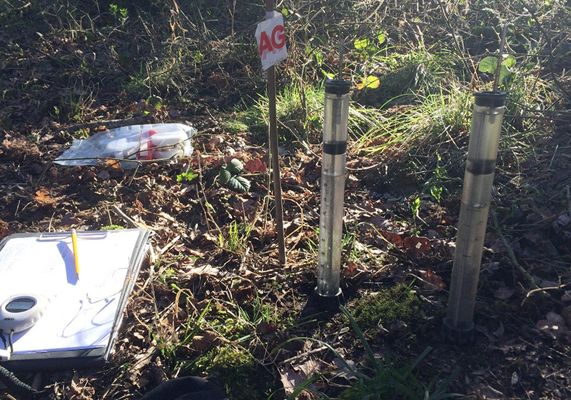 Scientific equipment on a woodland floor
