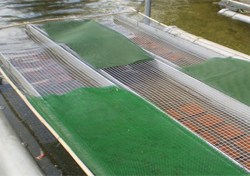 Shading on the Lambourn mesocosm used during the experiment