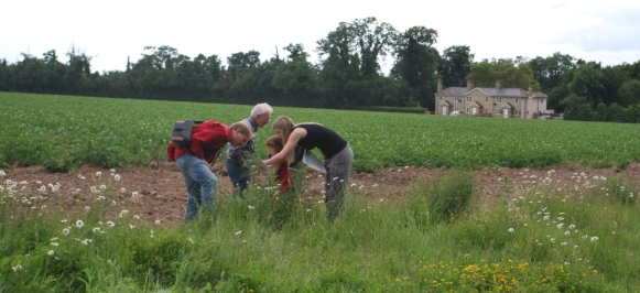 Citizen Scientists take part in a nationwide pollinator survey during Open Farm Sunday 2012 (c) Barnaby Smith/CEH.