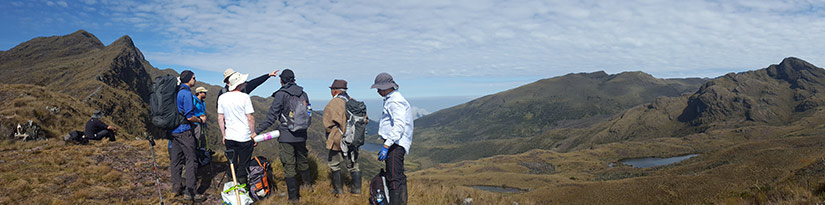 Group looking out over a paramo
