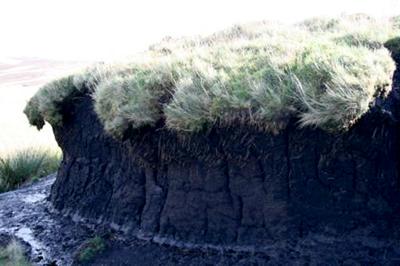 Peatland degradation
