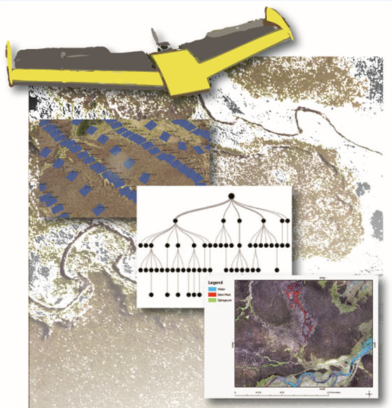 Surface model generated from drone-acquired imagery