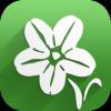 Rare Arable Flowers