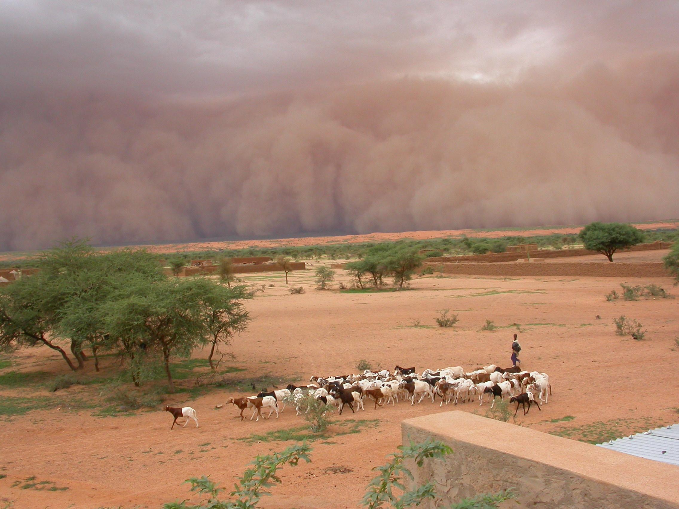 A storm in the Sahel Picture: Françoise Guichard / Laurent Kergoat / CNRS Photo Library