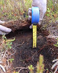 Measuring soil layers