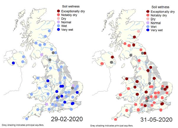 soil moisture comparison Feb-May 2020