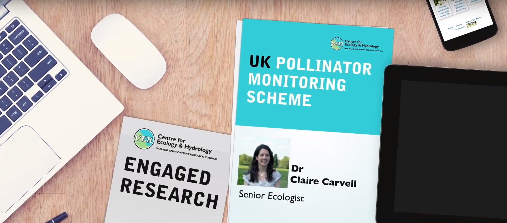 UK Pollinator Monitoring Scheme
