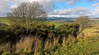 Upper Conwy
