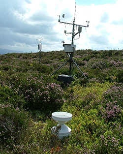 A weather station and a rain water collector