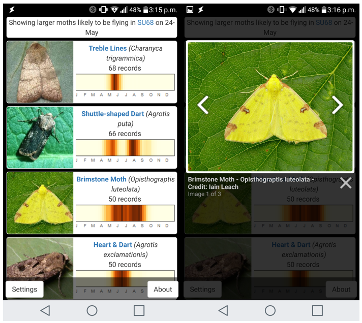 What's Flying Tonight moth app screengrab