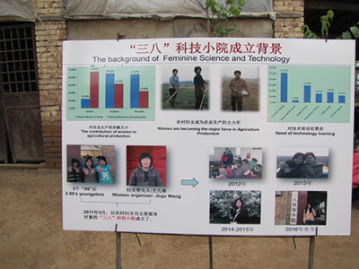 Poster on topic of Chinese women researchers in agriculture